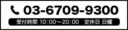 tel.03-6709-9300